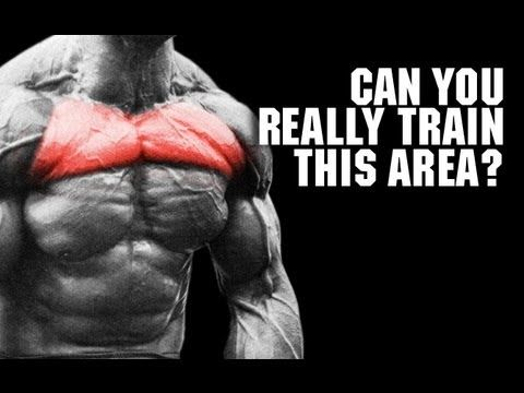 10++ Where are your pecs inspirations