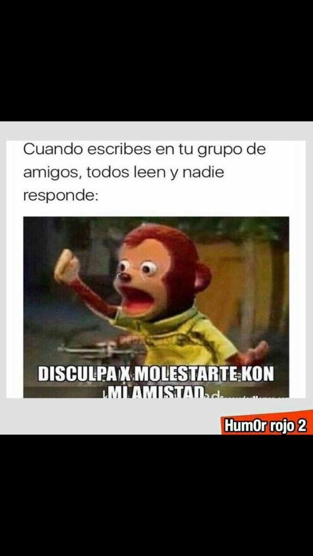 Pin De Ana Paula En Fun Memes Memes Divertidos Frases Chidas Estados Para Whatsapp