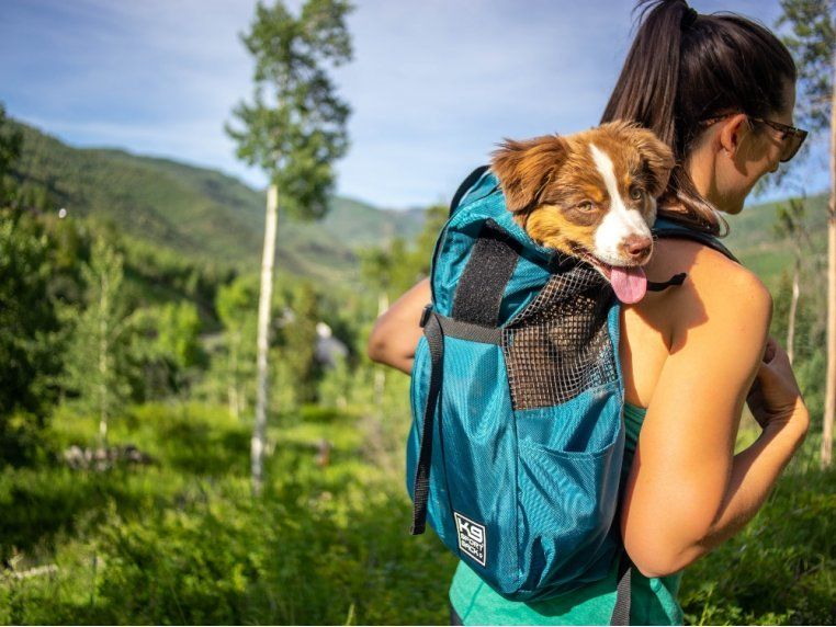 K9 Sport Sack® Trainer Dog Backpack Carrier Dog