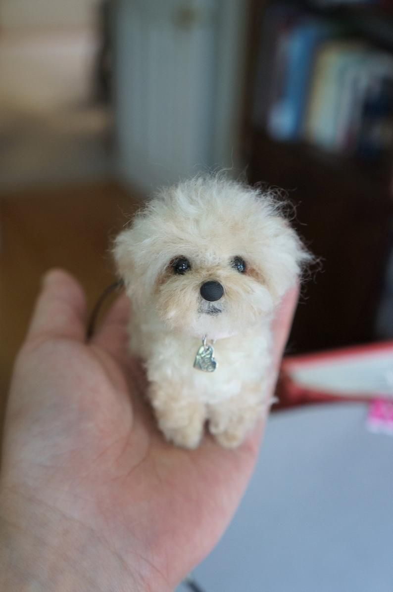 Assorted Needle Felted Puppies Maltese Shih Tzu Bichon Shorkie
