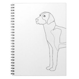 Breed Collection Gifts English Foxhound Golden Retriever Gifts Golden Retriever Illustration The Fox And The Hound