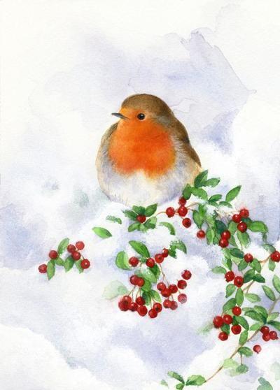 la-robin-and-snow