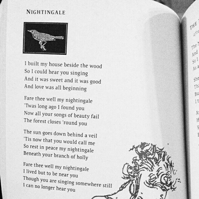Nightingale By Leonard Cohen Beautiful And Resonant Reading Quotes I Found You Kind Words