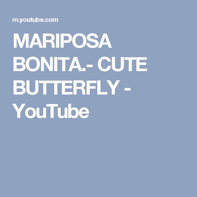 MARIPOSA  BONITA.- CUTE BUTTERFLY - YouTube