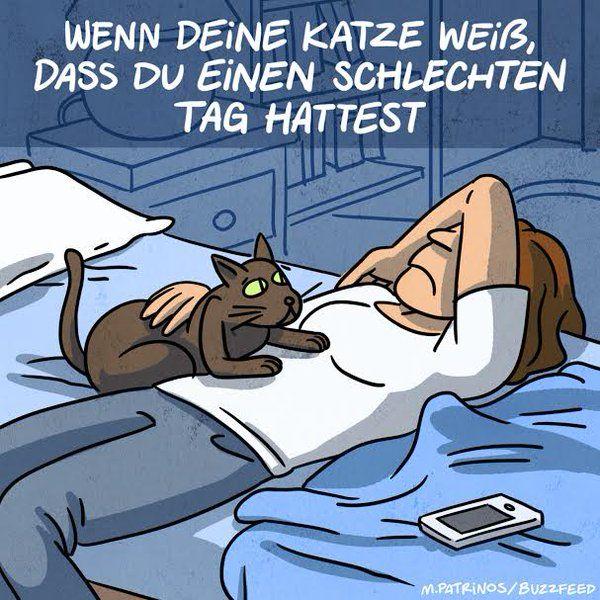 deutsch lernen anderedeutsch  seltsame katzen katzen
