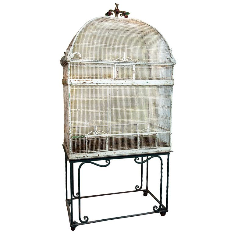 Metal Birdcage on Stand   Bird cages, Metals and Modern