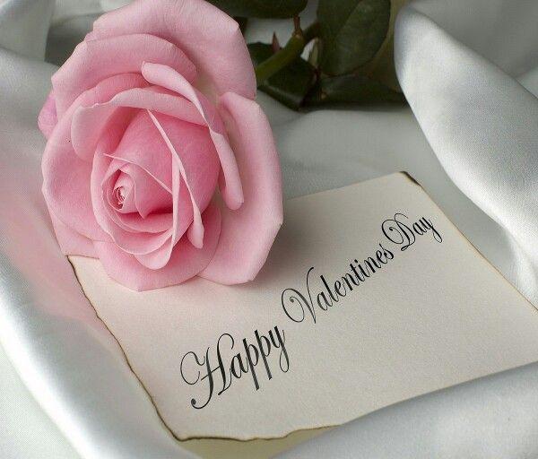 Happy valentines day pale pink rose wallpaper   Happy Valentine\'s ...