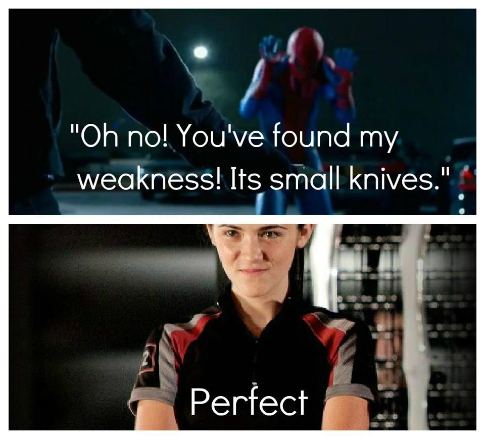 The Amazing Spiderman and The Hunger Games crossover!! Marvel and the Hunger Games!! Perfect!!