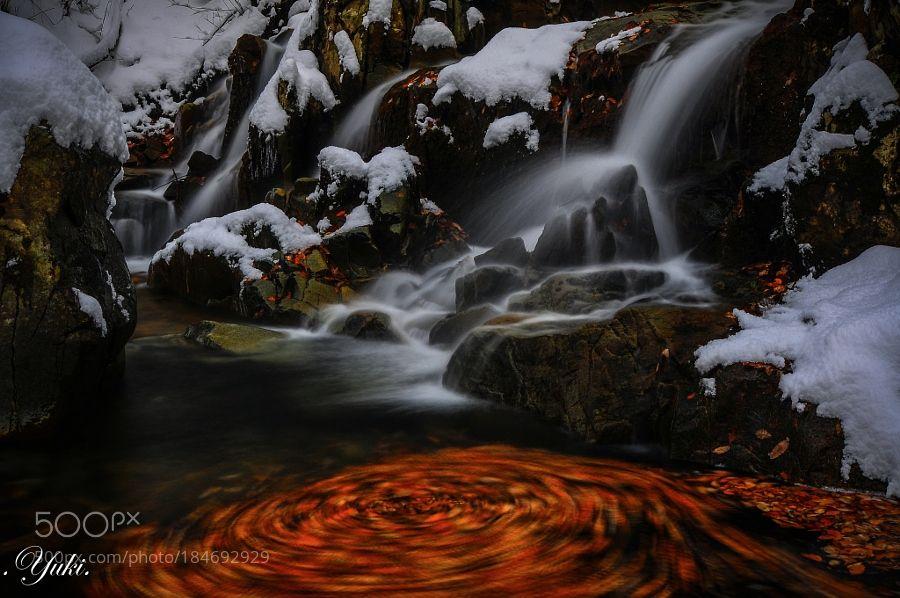 雨川 初雪 by yuki_ #nature #mothernature #travel #traveling #vacation #visiting #trip #holiday #tourism #tourist #photooftheday #amazing #picoftheday