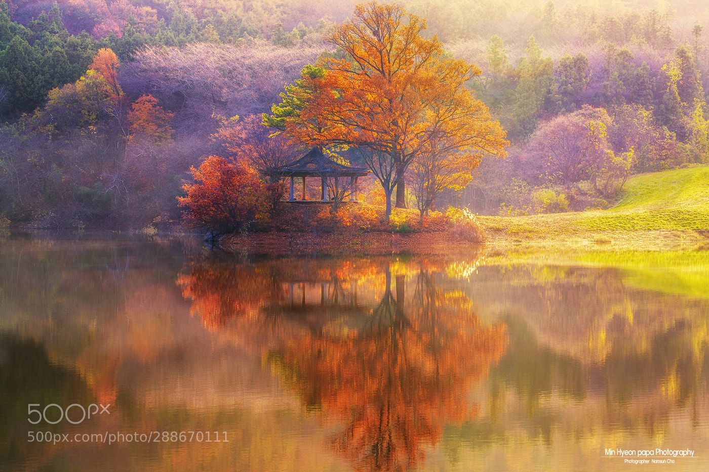 Warm sunshine by nscho777 Fall colors, Landscape, Nature