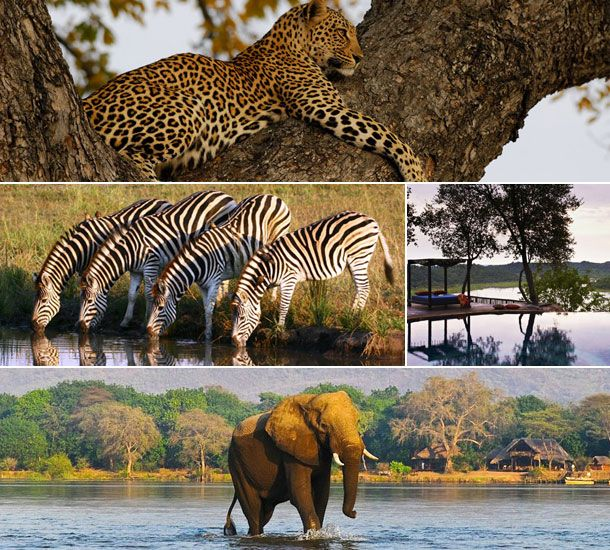 http://naturaltoursandsafaris.com/3_days_masai_mara_arts.php