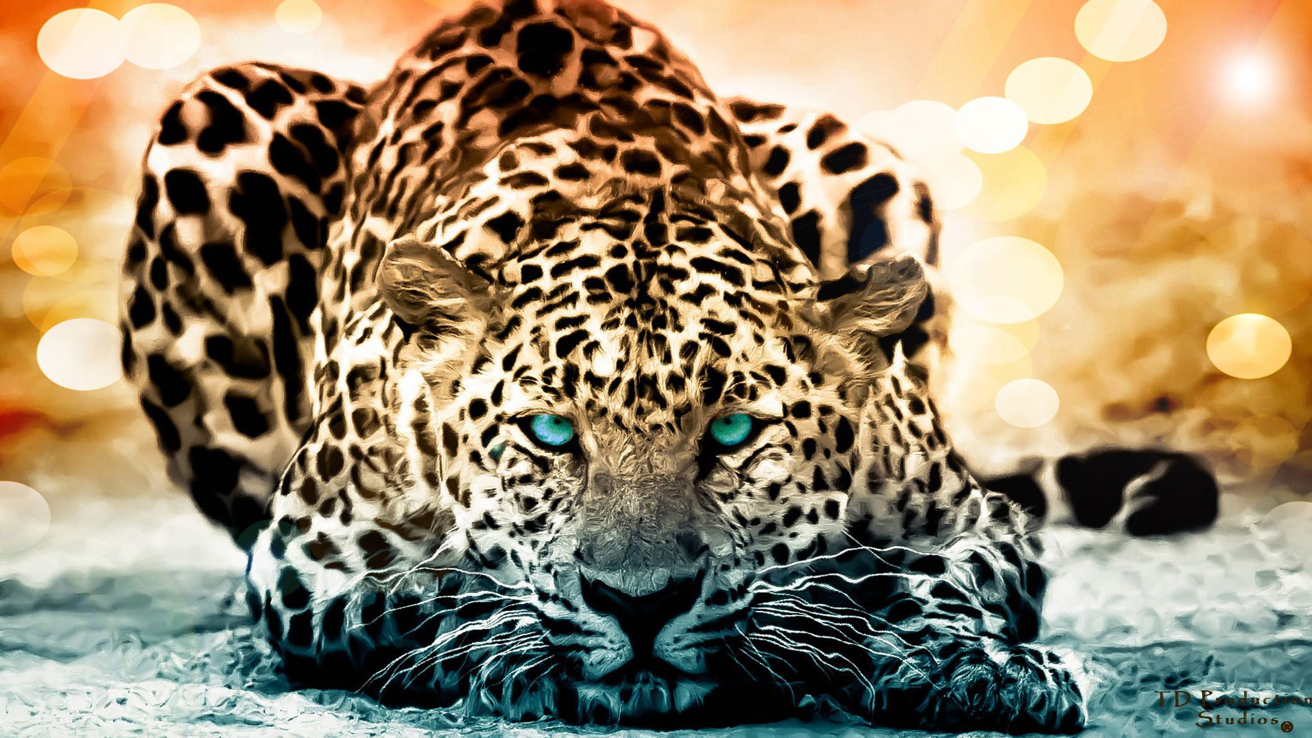 Download Wallpapers free Wild animals wallpaper 1280×1024