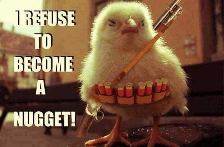 31 Hilarious Chicken Nugget Memes Quotes Funny Chicken Memes Chicken Humor Cute Memes