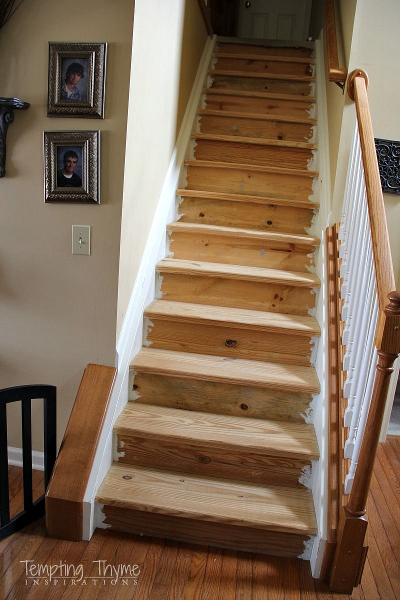 Diy how to rip up the carpet and refinish the treads and - Interior stair treads and risers ...