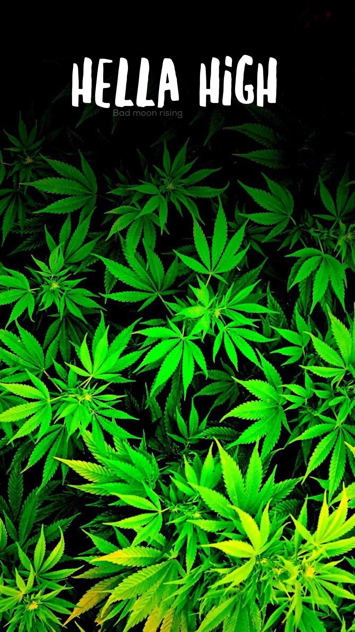 Ganja Wallpaper Iphone Hella High Iphone Wallpaper Background Stoner Marijuana