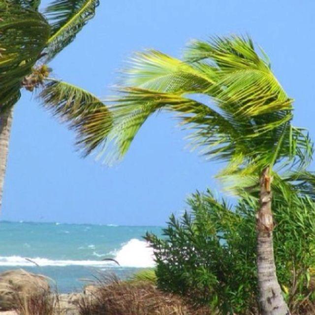 Puerto Rico... Grand Melia Resort.
