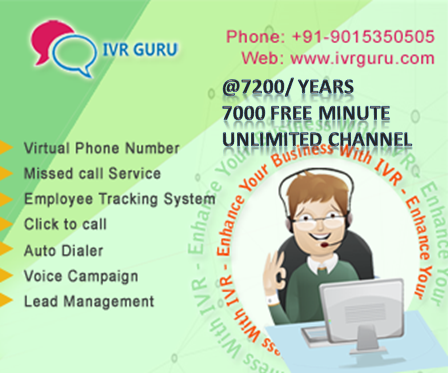 Give your Business a New Voice. IVR, TollFree Number