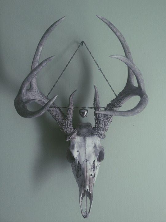 road bones | hippie room | Pinterest | Calaveras, Huesos y Anatomía