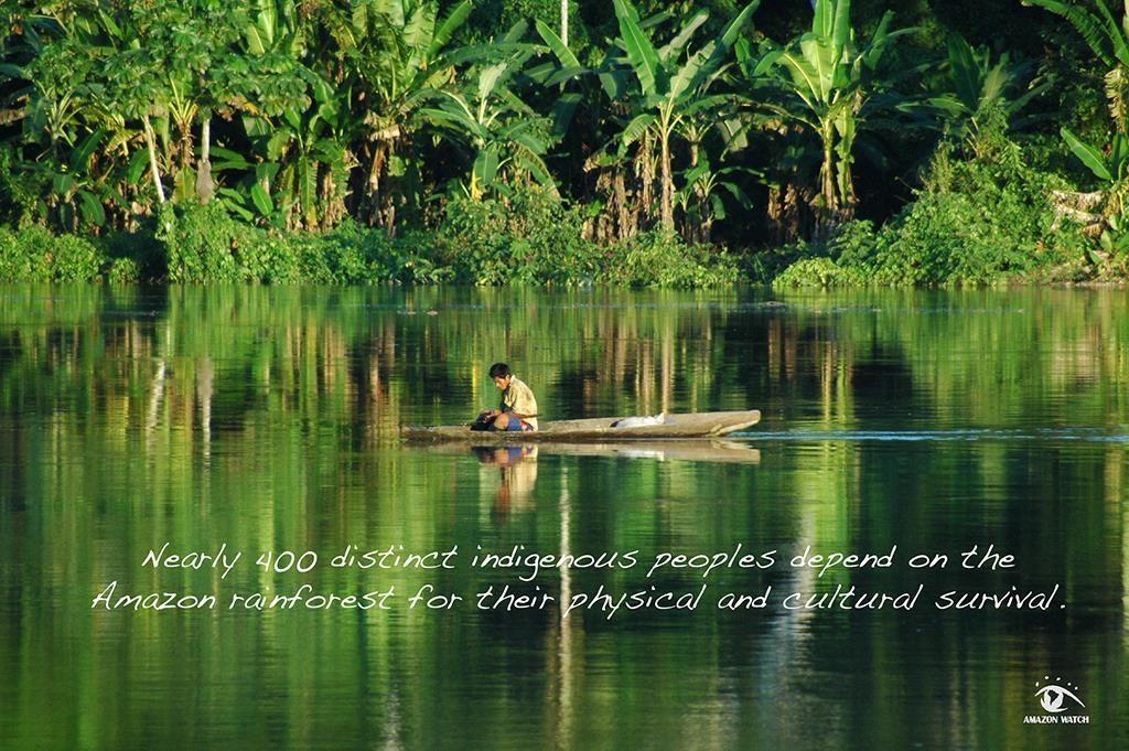 Cerca de 400 povos indígenas distintos dependem da Amazônia para a sua sobrevivência física e cultural