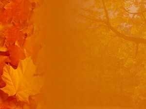 Fall autumn 04 powerpoint templates backgrounds free template fall autumn ppt template for powerpoint presentation toneelgroepblik Gallery