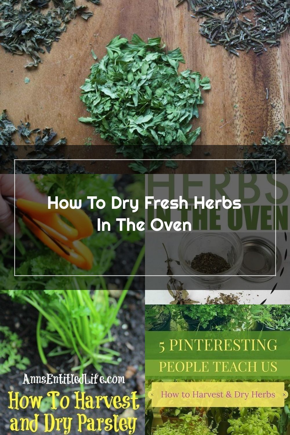 How To Dry Fresh Herbs In The Oven Have Your Own Dried Herbs In A Little Over An Hour These Instructions Are So Easy To In 2020 Drying Herbs Herbs Drying