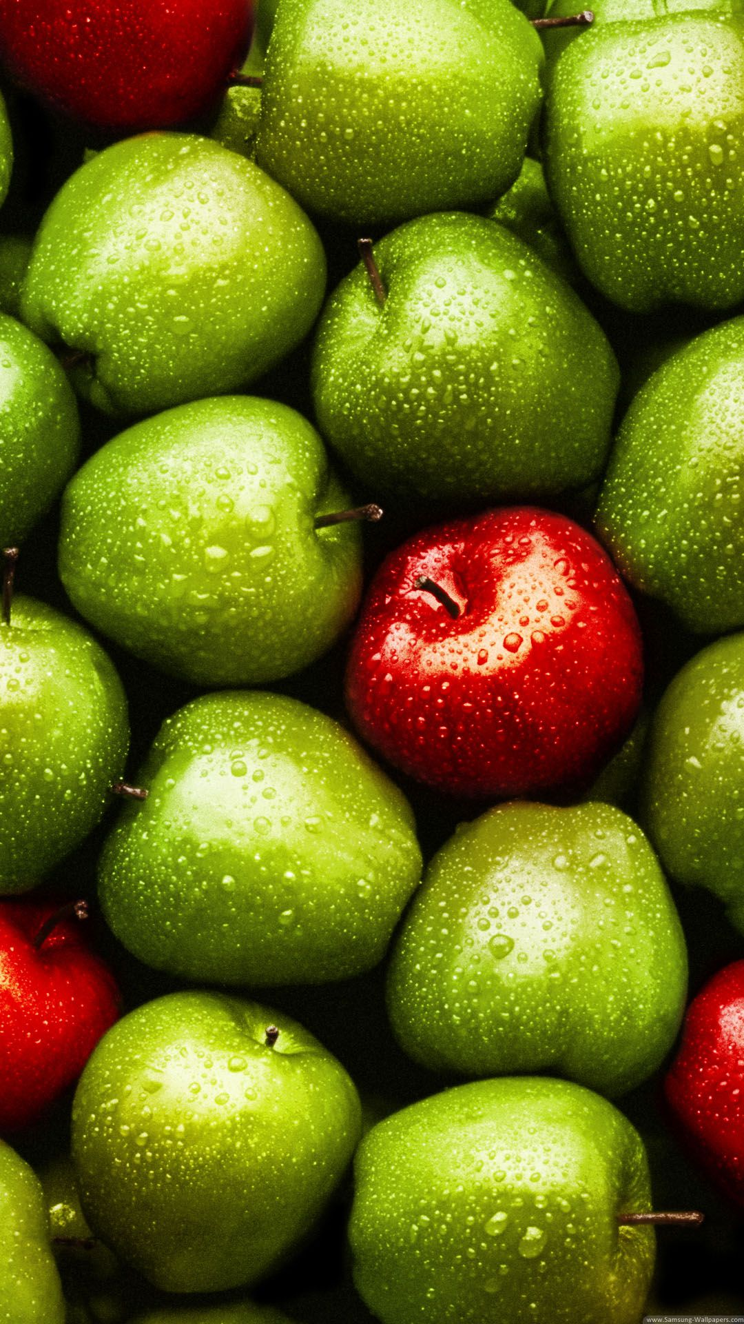 Download green red apples iphone 6 plus hd wallpaper - Red apple wallpaper ...
