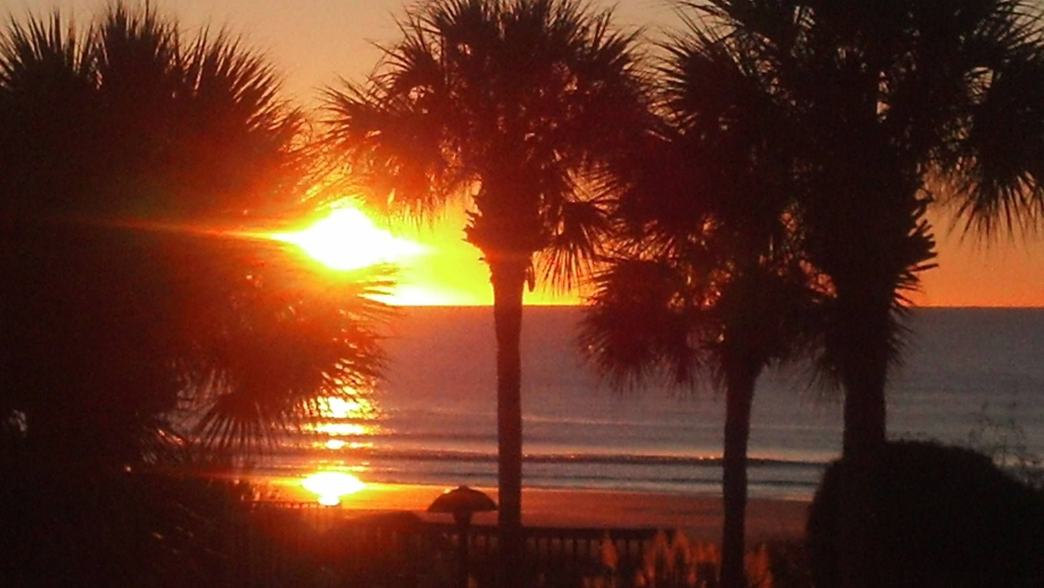 Things to Do on Hilton Head Island and in Bluffton in