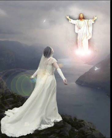 Image result for Bride of Chirst and Jesus