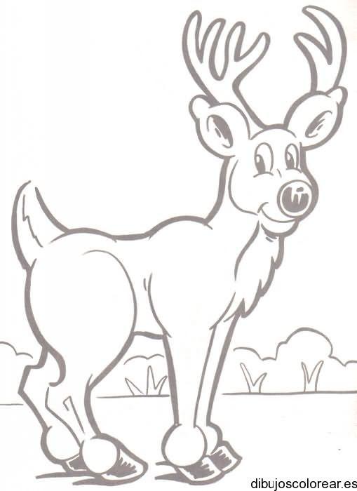 Rodolfo El Reno Para Colorear Buscar Con Google Window Mural Coloring Books Moose Art