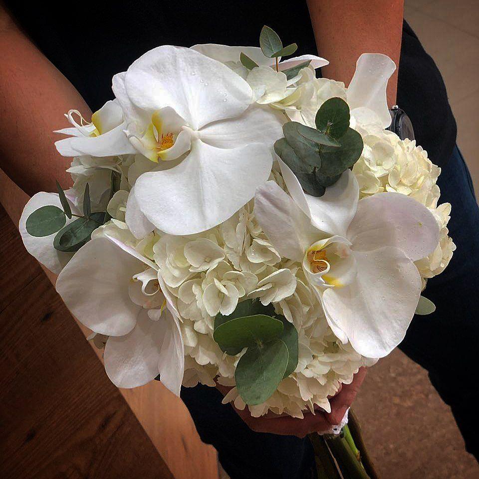 ورد الهيندرجنا مع الفلنبسيس مسكةعروس مسكةعروس مسكة يد مسكة عروسه مسكةعرايس مسكةالعروس Wedding Cakes Flowers Laptop Stickers