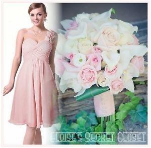 ♥ BNWT Corsage Chiffon Baby Pink Bridesmaid Dress ** ORDER FOR laurel_1987 **