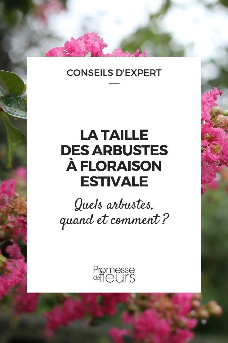 la taille des arbustes floraison estivale promesses de. Black Bedroom Furniture Sets. Home Design Ideas