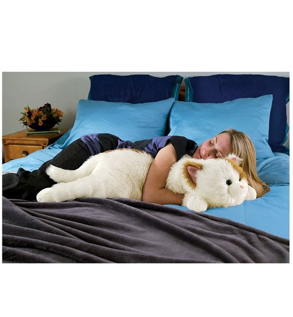 Cat Body Pillow Best Selling Gifts Wind Amp Weather Body Pillow Cat Body Kids Pillows