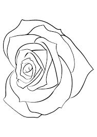 rose mandala - Google Search | Rose coloring pages, Shape ...