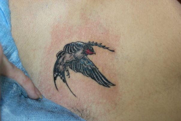 Female tattoo #tattoo #sketchtattoo #idea #ink  #tattooartist #tattoonhamon #inked #tattooed #bird