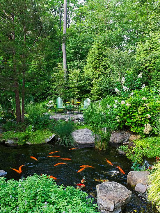 One of the best reasons to install a water garden is to enjoy the wildlife it lures in: birds, toads, and frogs. The homeowners in this lovely backyard water garden have also stocked their pond with graceful koi -- large orange, white, yellow, and black fish -- to offer a relaxing diversion.