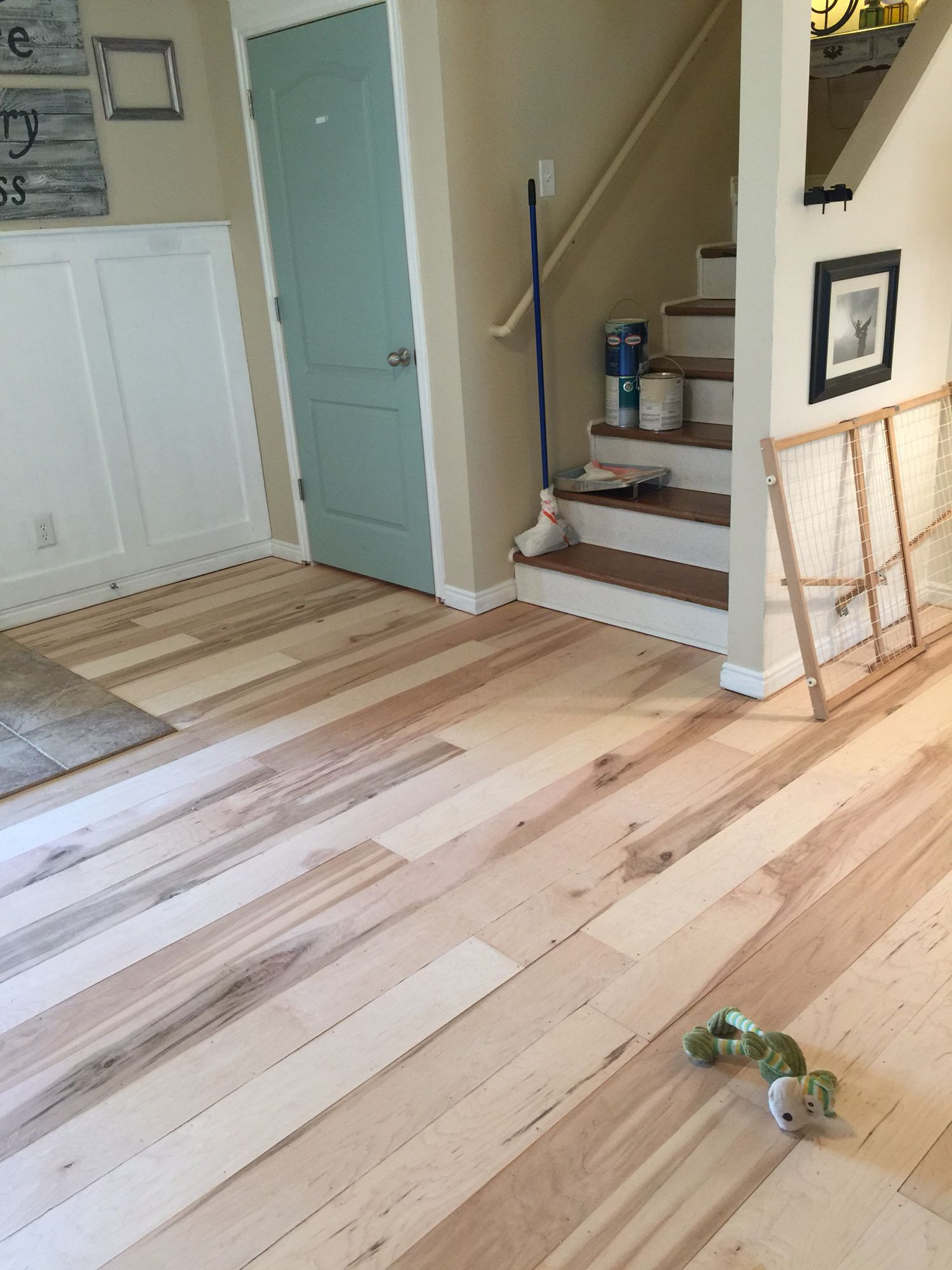 Maple plywood floor. House flooring, Cheap flooring, Diy
