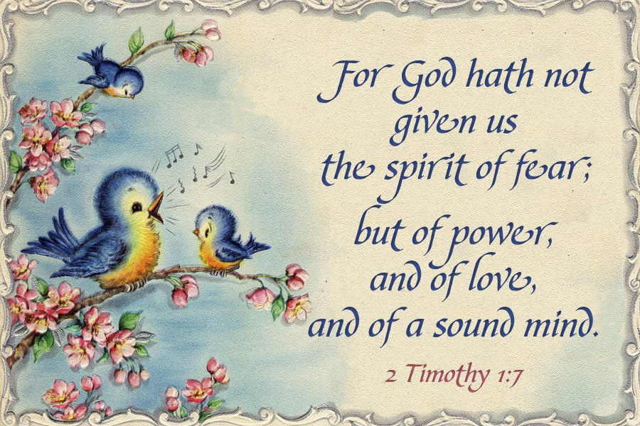 For God hath not given us the spirit of fear; but of power, and of love, and of a sound mind. 2 Timothy 1:7