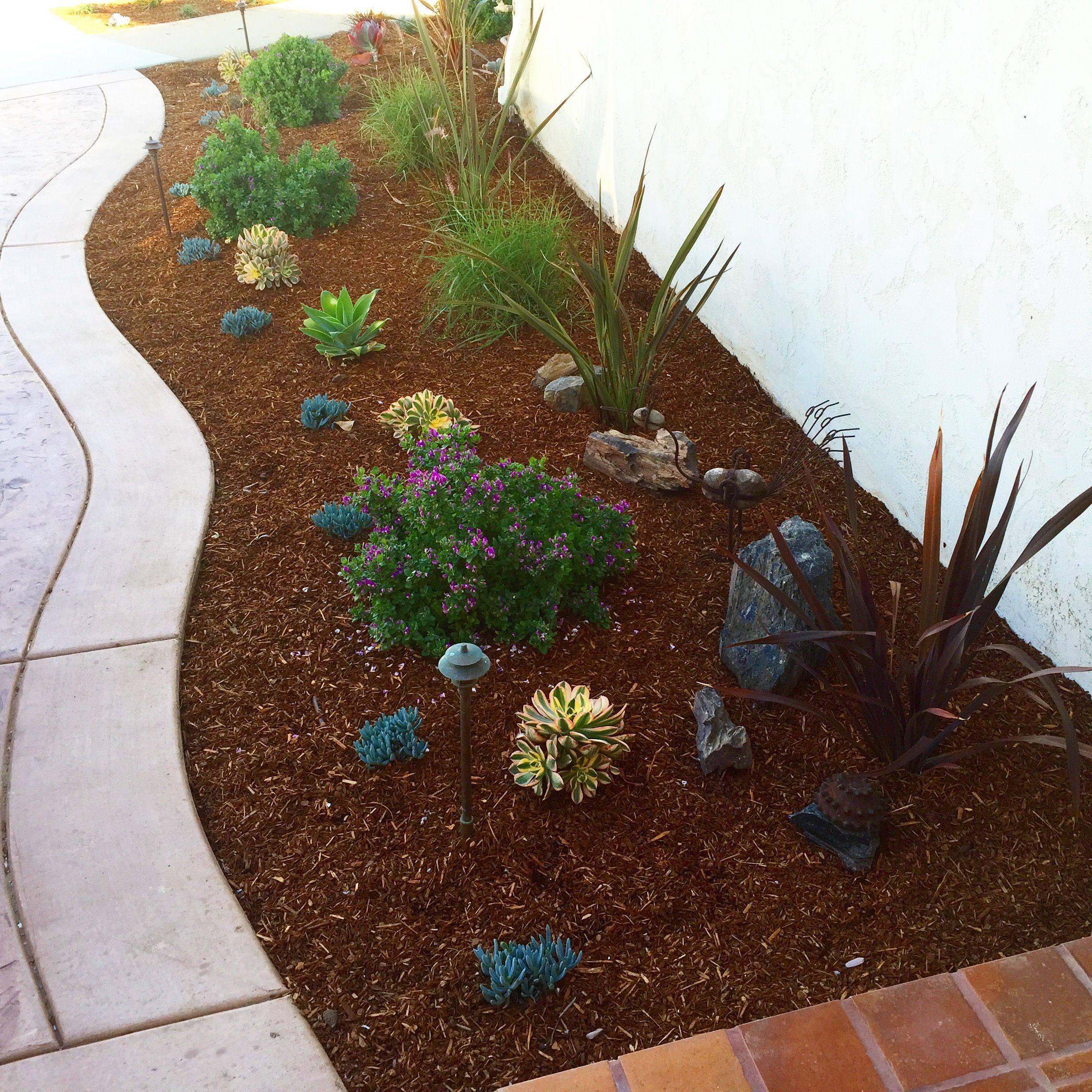 Residential & Commercial Landscape Maintenance San Diego