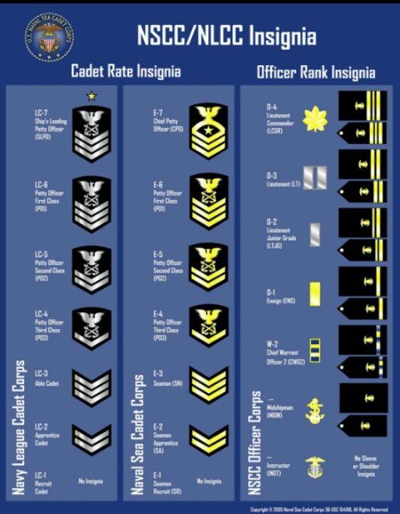 Sea Cadet Insignias Navy Officer Ranks Civil Air Patrol Navy Training