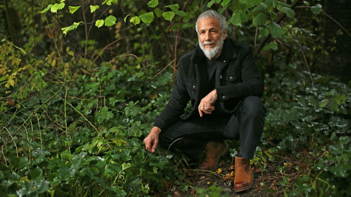 Yusuf Revisits Tea For The Tillerman His Masterpiece As Cat Steven Npr In 2020 Cat Stevens Father And Son Steven