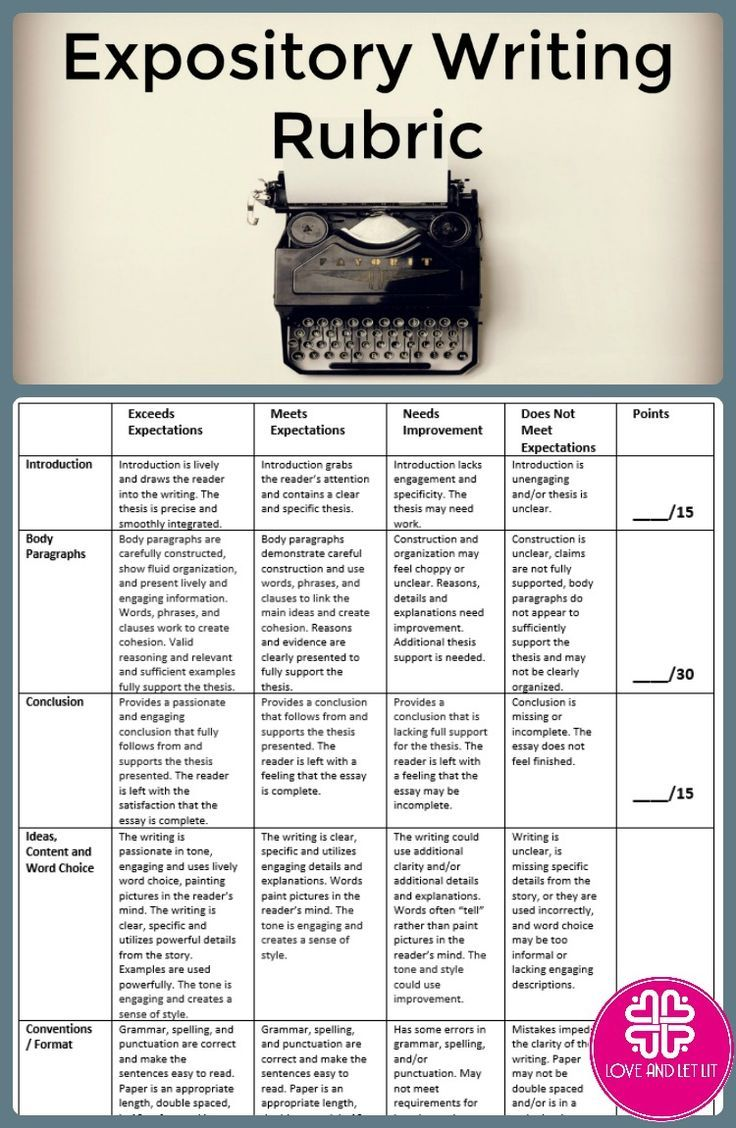 exposition essay writing expository essay
