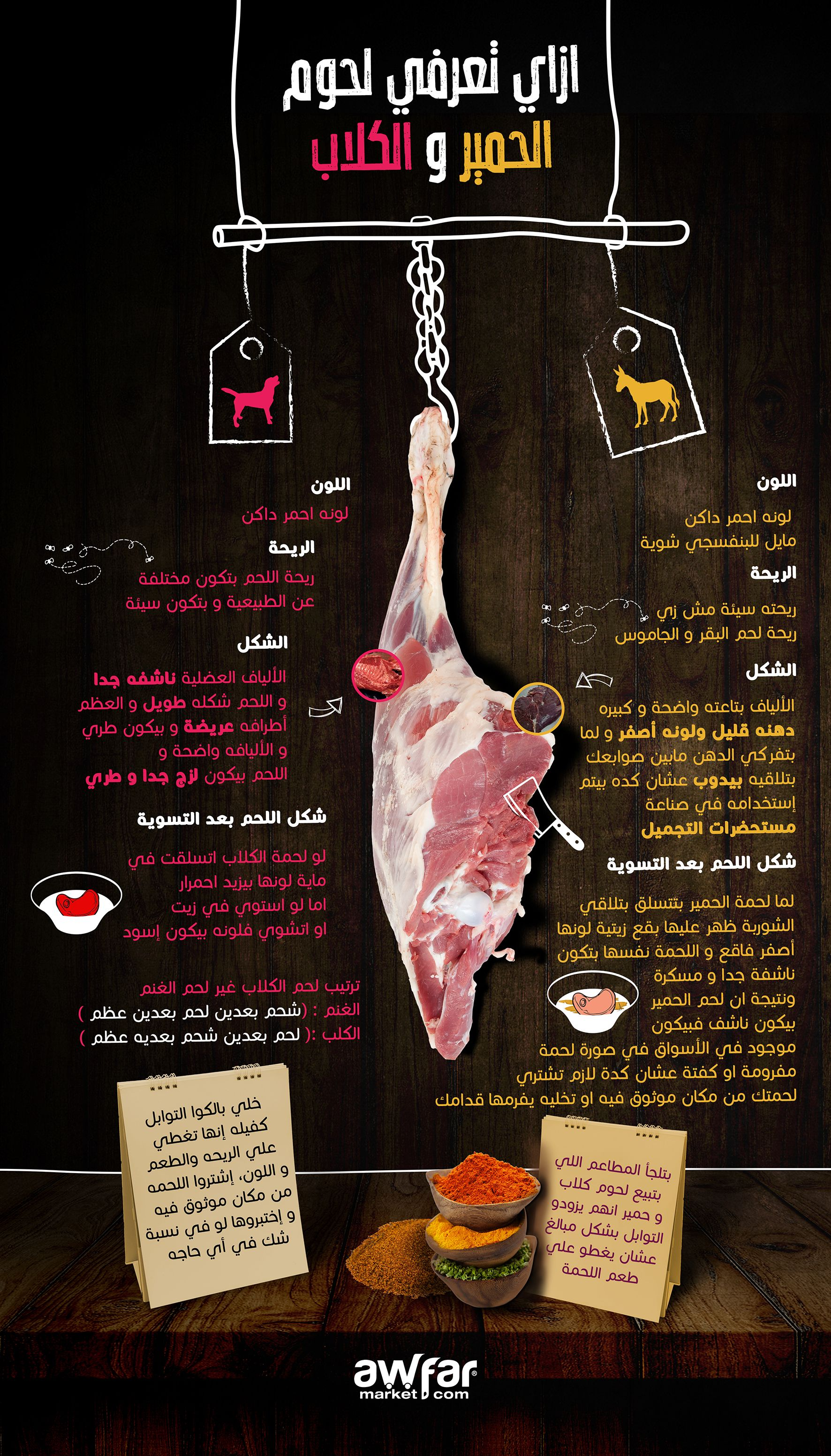 Dogs vs donkeys meat food infographic food content