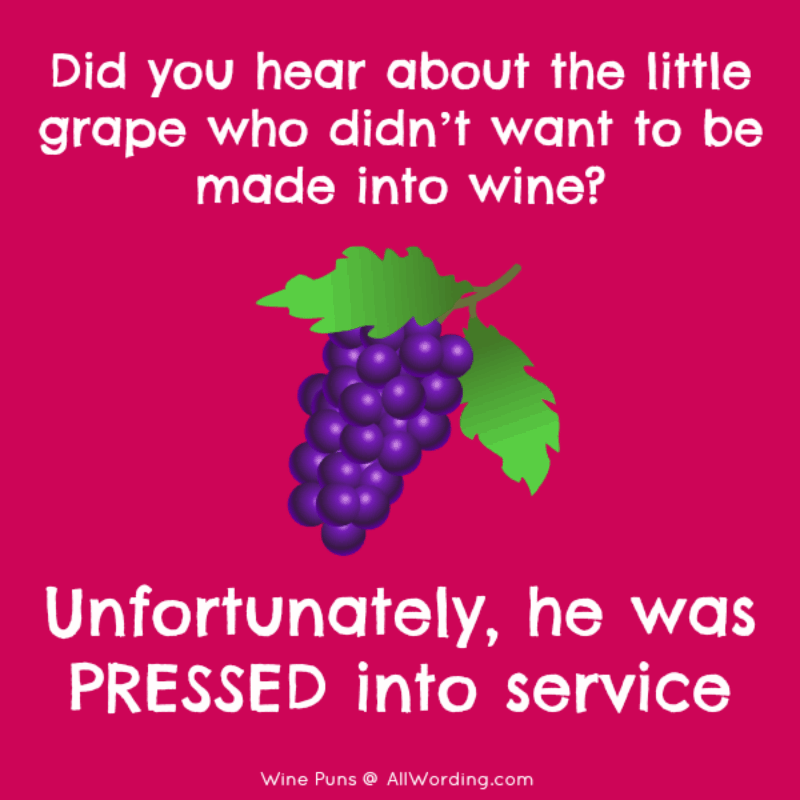 This List Of Wine Puns Is A Real Corker Wine Puns Funny Food Puns Puns