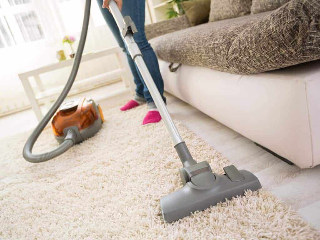 There Are A Variety Of Different Best Dehumidifiers Available In The Market Check Out These Effective Tips That You Should Know To Use Be Steam Clean Carpet Best Carpet How To