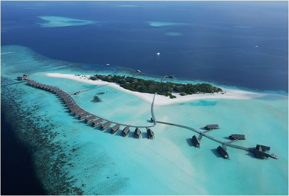 Cocoa Island Resort, Maldives. On my bucket list. Swimming with whale sharks would be the most amazing gift I could ask for.