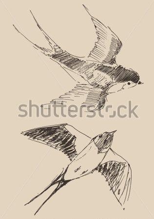 Andorinhas Voando Desenho Pesquisa Google Passaros Voando