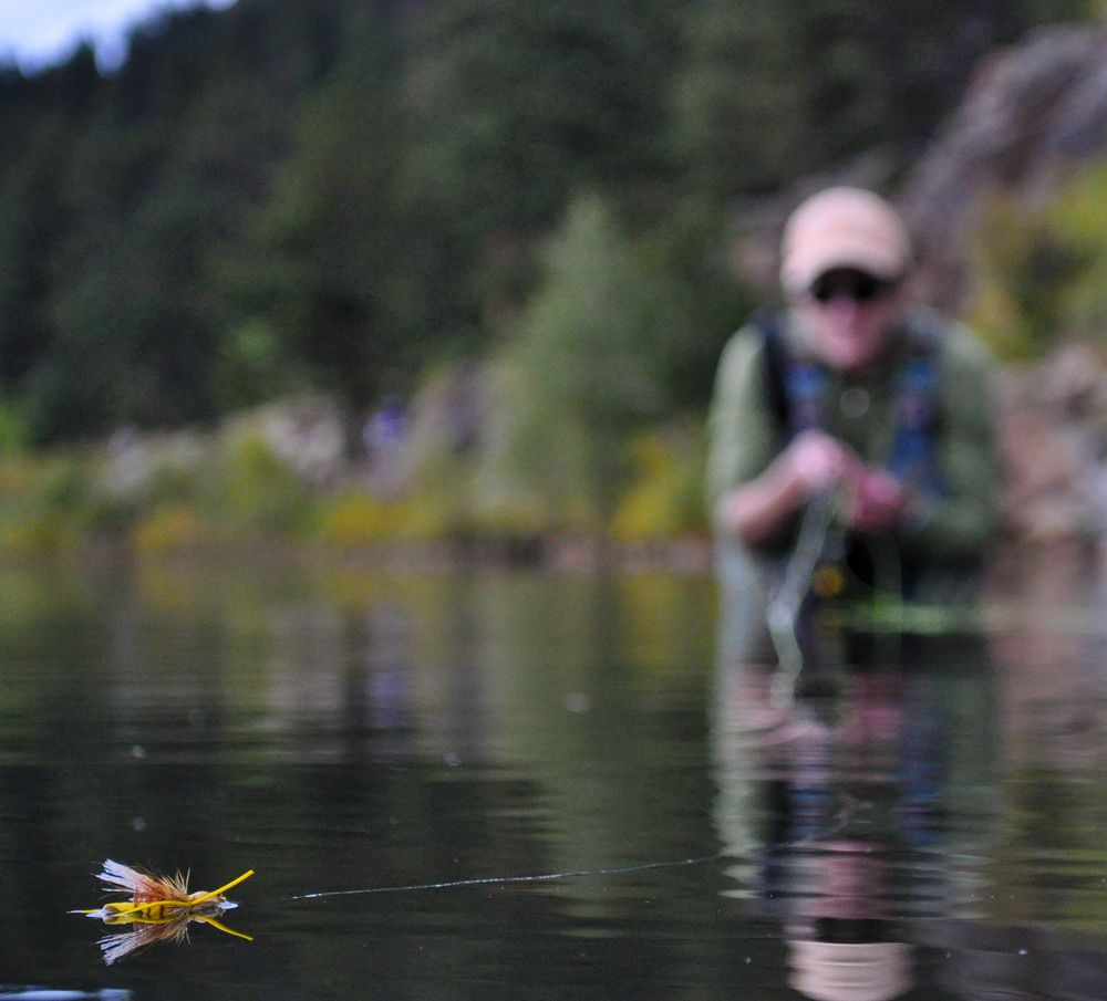Fishing Close To Home Northern Front Range Rivers Lakes And Ponds Fishing Photography Fly Fishing Fly Fisherman