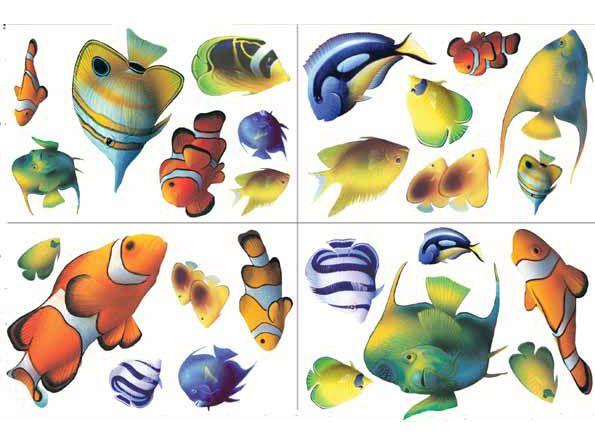 Worhpacitol Ocean Wallpaper Border Aquarium Fish Salt Water Fish Fish Art