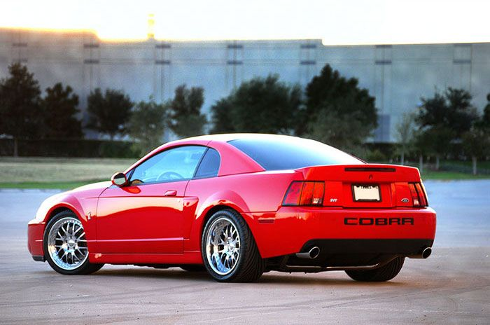 By The Svt Was Built Mustang Ford Cobra